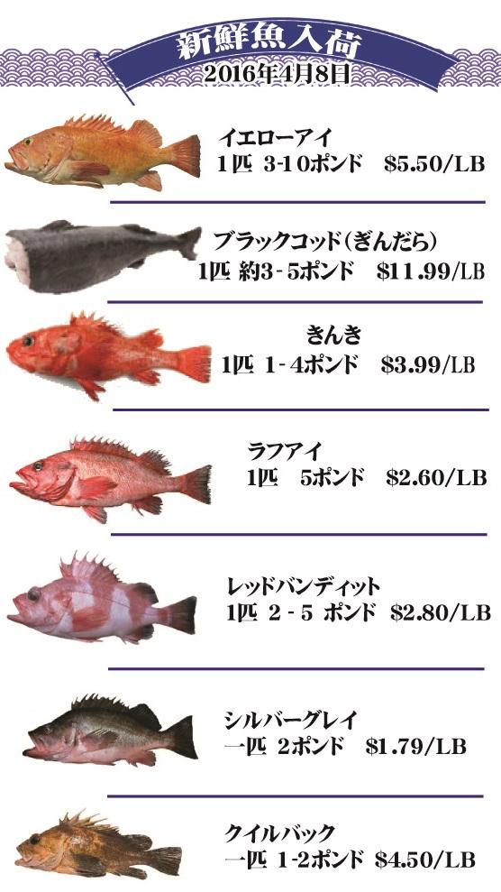 seabornfish