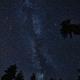 『ペルセウス流星群』深夜から早朝にかけて見れます。